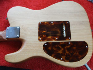 Tremolo cavity cover in place